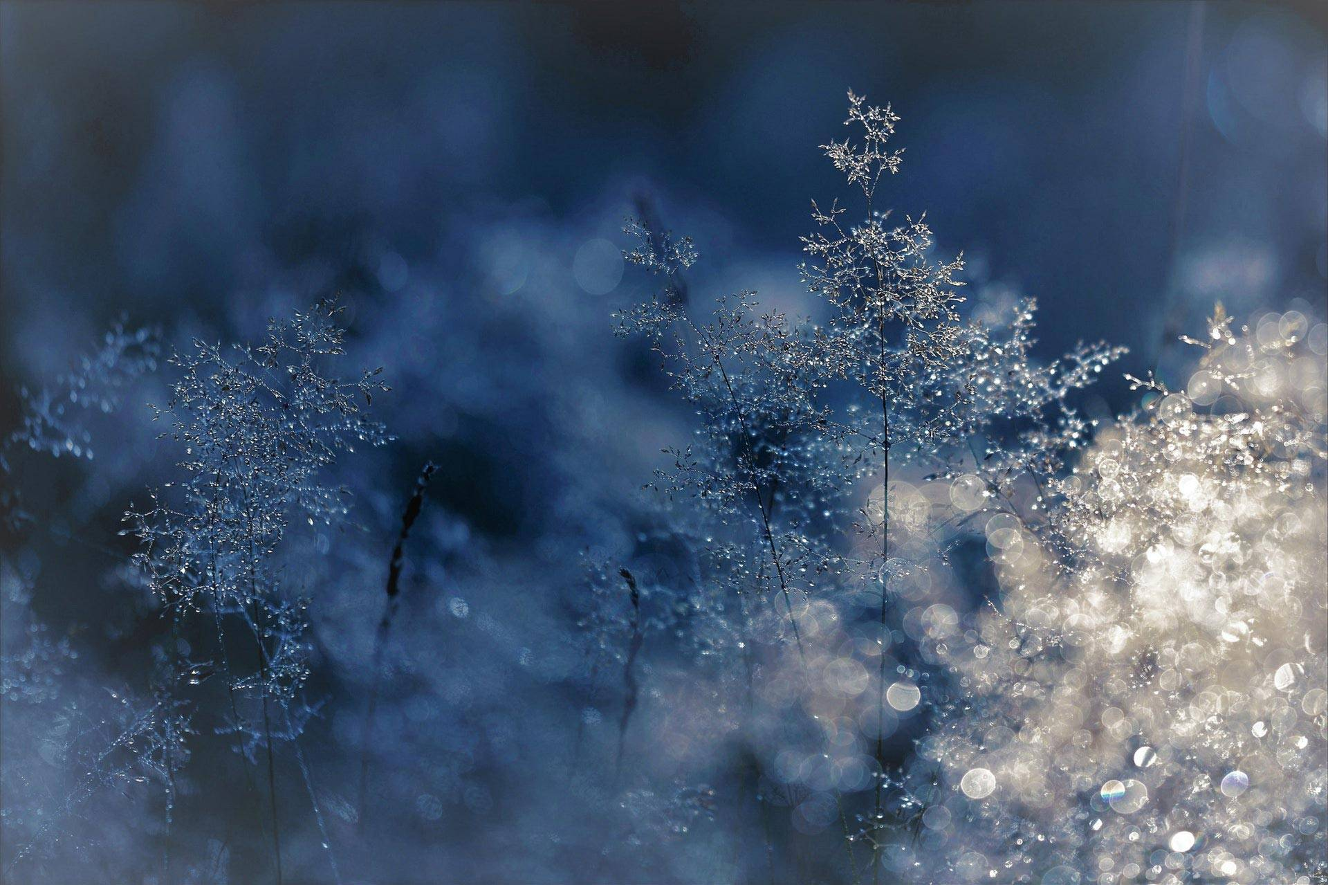 Energie de l'hiver